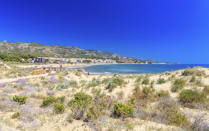 Turismo-Alcossebre-Playa-Carregador-Alcossebre_Dunas