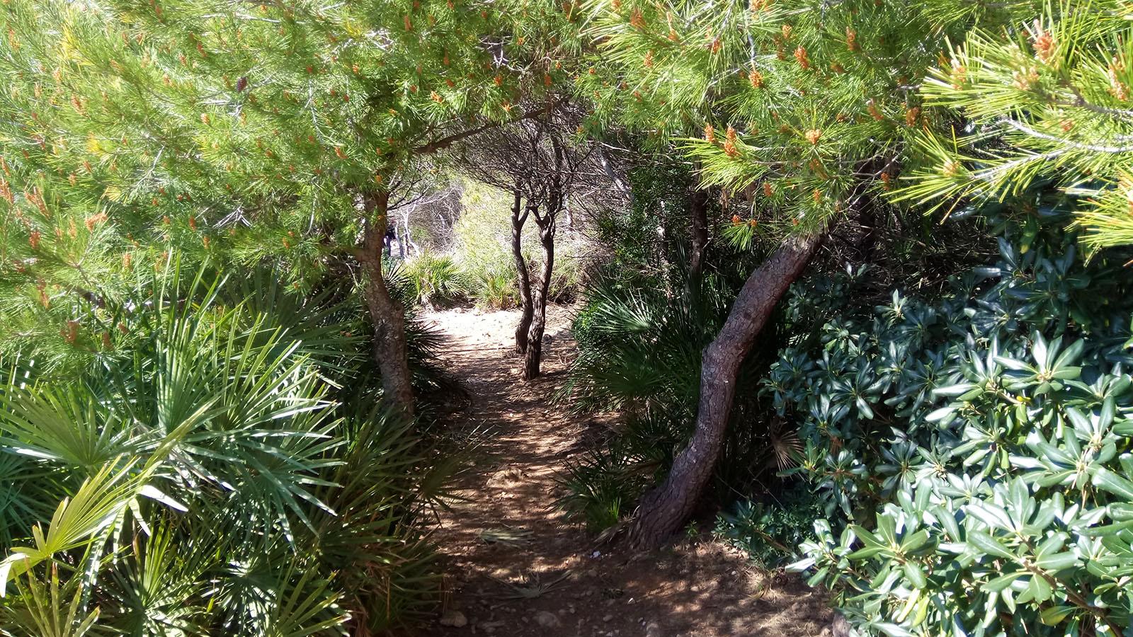 turismo-alcossebre_parque-natural-sierra-de-irta
