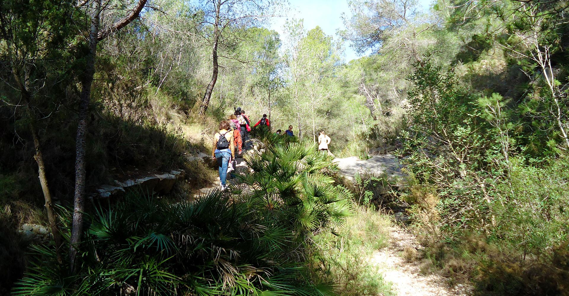 Turismo Alcossebre. Senderismo en Alcossebre