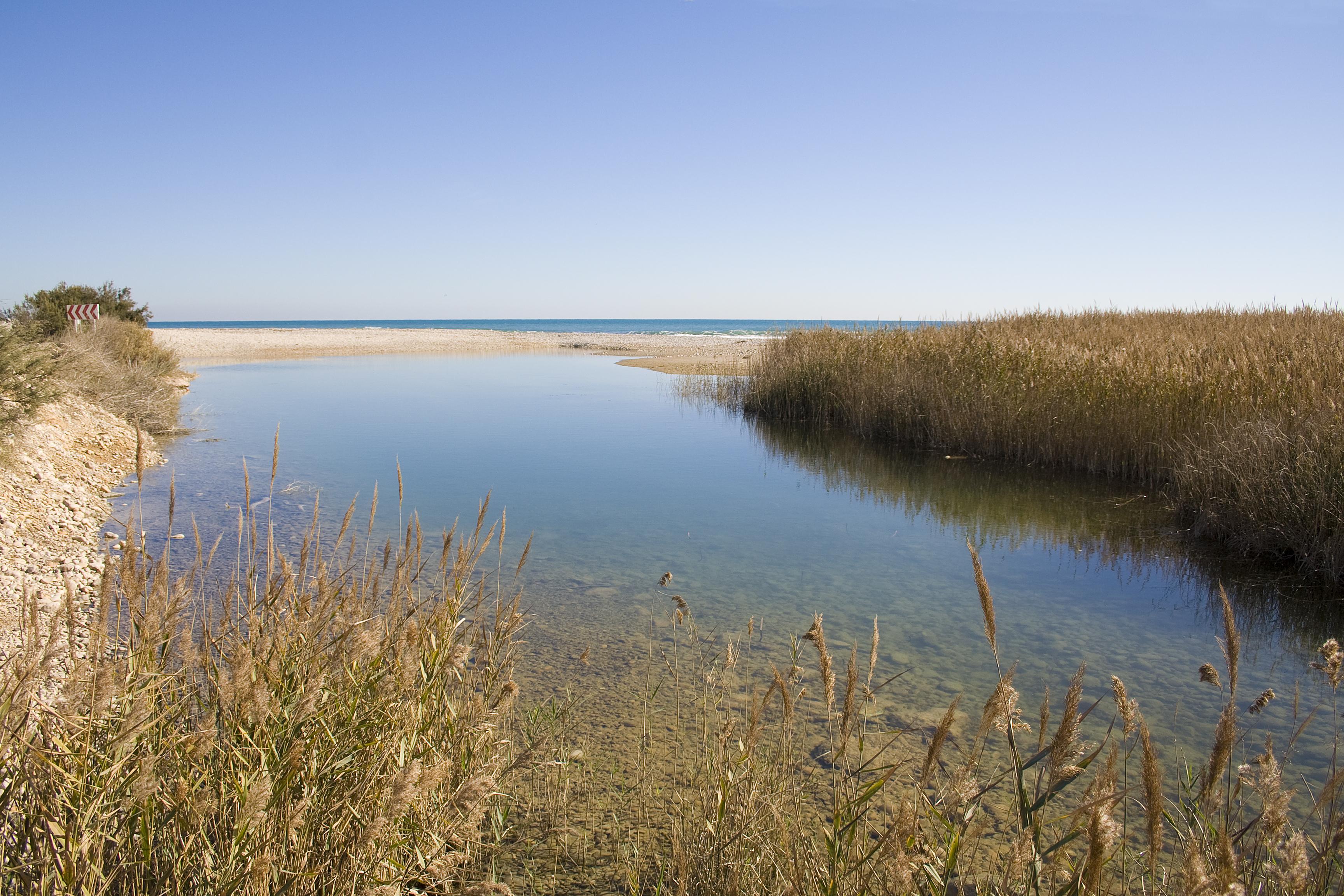 Desembocadura Rio San Miguel (2) reina