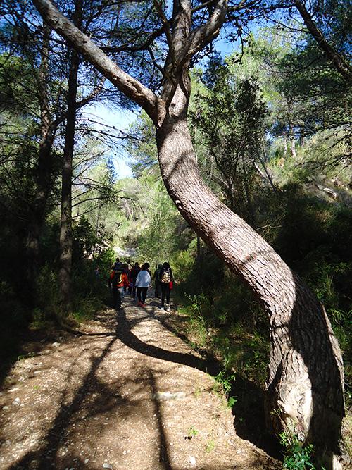 turismo-alcossebre-ruta-pico-cabanillas
