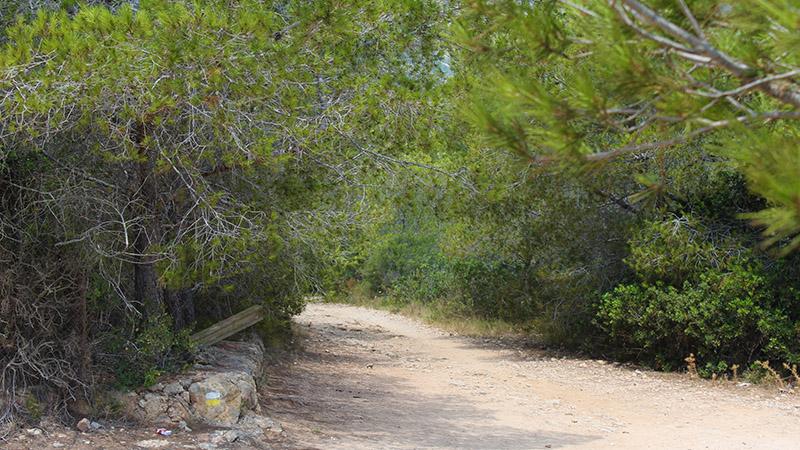 turismo-alcossebre-senderismo-trekking